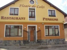 Pension Floare De Colti | accommodation Baia Mare