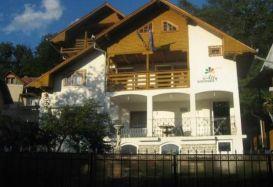 Villa Ally | accommodation Baile Olanesti