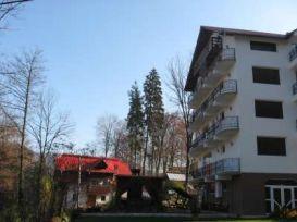 Villa Feny | accommodation Baile Olanesti