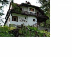 Villa Veverita | accommodation Borsec