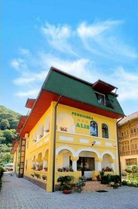 Pension Alis | accommodation Calimanesti