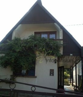 Pension Bai Termale Carei | accommodation Carei