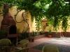 Hostel Transylvania Hostel | accommodation Cluj Napoca