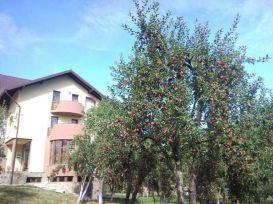 Pension Daiana | accommodation Frasin
