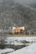 Pension Casa Lucas | accommodation Gura Raului