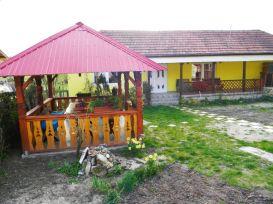 Villa Casa Otilia | accommodation Hateg
