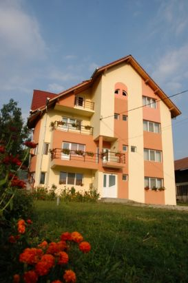 Pension Nicoleta   accommodation Horezu