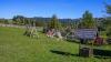 Pension Casa Bradet | accommodation Intorsura Buzaului