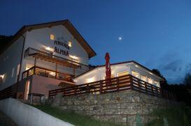 Pension Alpina | accommodation Malaia