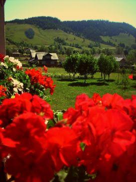 Pension Cristiana   accommodation Manastirea Humorului