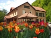 Villa Cerbul Albastru   accommodation Moneasa