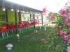 Villa Diadeea | accommodation Motru