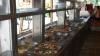 Pension Holiday | accommodation Ocna Sugatag