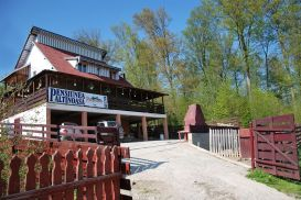 Pension Paltinoasa | accommodation Paltinoasa