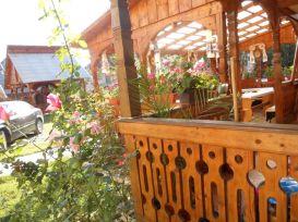 Pension Ileana Petreus | accommodation Poienile Izei