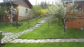 Pension Napraforgo (Floarea Soarelui) | accommodation Praid