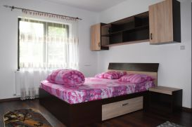 Apartment ELDYA COMFORT&SUITES | accommodation Predeal