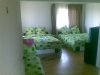 Pension Codruta   accommodation Ranca
