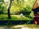 Pension Cornel | accommodation Rasinari