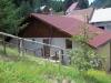 Pension Ioana | accommodation Rausor