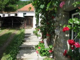 Pension Abelia   accommodation Rimetea
