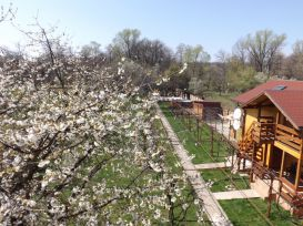 Pension Pentru Tine, Prietene | accommodation Runcu