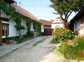 Pension Margareta | accommodation Sacele