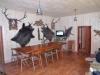 Chalet Calimani | accommodation Saru Dornei