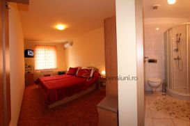 Pension Ileana | accommodation Sibiu