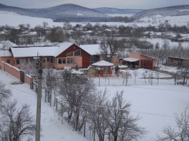 Pension Ozone Garden And Forest | accommodation Slava Rusa