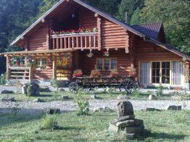 Pension Paltinu   accommodation Sucevita