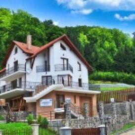 Pension Radu | accommodation Timisul de Jos