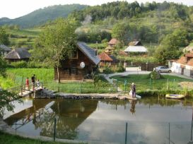 Pension Ioana | accommodation Vadu Izei