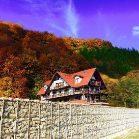 Chalet Izvoarele Doftanei | accommodation Valea Doftanei
