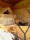 Chalet Cabana Cu Veverite | accommodation Vatra Dornei