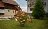 Pension Doi Crai | accommodation Zarnesti