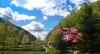 Pension Pastravaria Bratioara - accommodation Muntenia