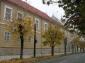 Muzeul Judetean de Arta - Centrul Artistic Baia Mare - baia-mare