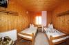 Pension Trandafirul Albastru - accommodation Maramures