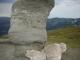 Monumentul natural (Stanca) Broasca cu cei 3 pui - busteni