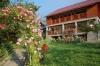 Pension Poiana Soarelui - accommodation Transalpina