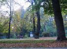 pension Colibri Crisan - Accommodation