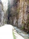 Pensiunea Valea cu Brazi - Cazare Piatra Craiului