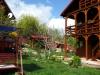 Vila Casa cu Smochini - Cazare Eselnita