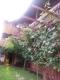 Villa Deea - accommodation Gura Humorului
