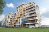 Apartment Vila Sophia 1 - accommodation Litoral