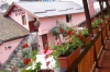 Pension Izvor - accommodation Bran Moeciu